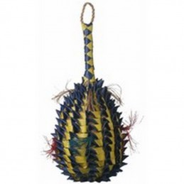 Pineapple foraging basket...
