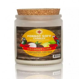 Chandelle - Coconut et lime