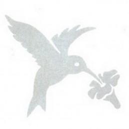 Alerte fenêtre colibri
