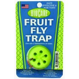 Trappe mouches à fruits