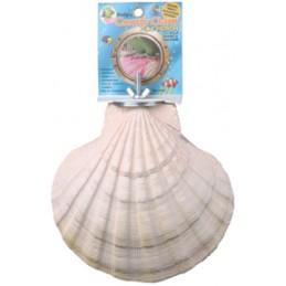 Comfy clam LG